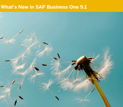 SAP Business One 9.1 What's New